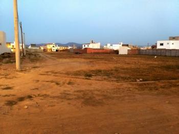 Estación Alvarado